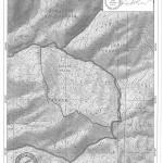 Zona 54