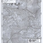 90 - Cinghialai dei Monti Lepini